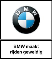 Dubbelsteyn BMW/MINI